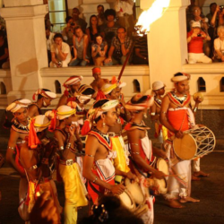 Figure 2: Festival of the Tooth in Sri Lanka. Image from Omar AV [CC BY 3.0 (http://creativecommons.org/licenses/by/3.0)], via Wikimedia Commons